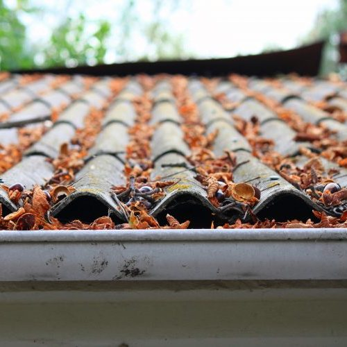 gutter cleaning debris removal
